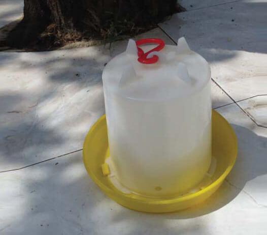 כלי מים לולי חופש